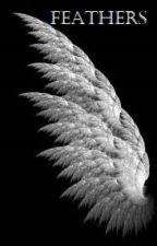 Feathers - Höyhenet by Maijakaroliina