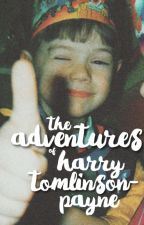 the adventures of harry tomlinson-payne by onesevenstyles