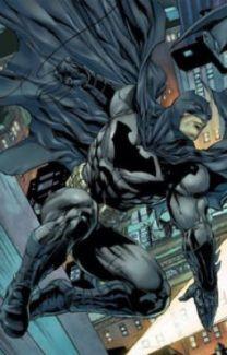 A New Love (Bruce Wayne (Batman) x reader) - Lady Alexa - Wattpad