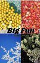 Big Fun | senior year by emmaleejeans