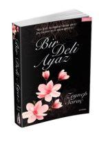 Bir Deli Ayaz (Kitap olarak raflarda) by ZeynepSarac_