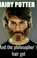 Hairy Potter and the Philosopher's Hair Gel by TheMispunderstood