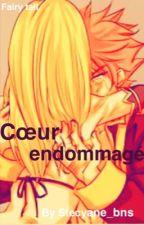 Cœur endommagé by Stecyane_bns