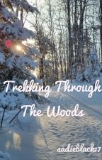 Trekking Through The Woods: A Storm and Silence Fanfic by sadieblack17