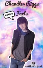 Chandler Riggs Facts by walkerr_girl