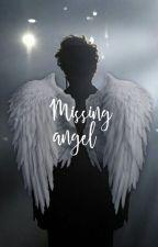 Missing Angel h.s by karlie8811