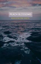 peach blossoms | baekyeon by softbyun