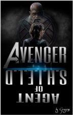 "Avenger oder doch ""nur"" Agent of S.H.I.E.L.D? by Gray2738"