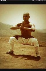 Kung Fu by FemaleGokuIsTheBest