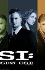CSI Miami Oneshots by CSImiami2562