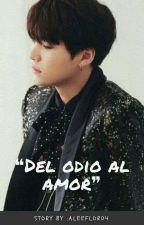 Del Odio Al Amor (Suga y tu) by aleeflor04