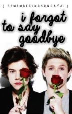 I Forgot To Say Goodbye. {One Direction} by rememberingsundays