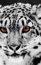 The Last Snow Leopard by aileensweetie14