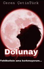 Dolunay by alman-kizi