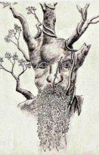 Treebeard's Lament by darethedarkness