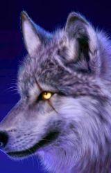 In the wolfs eye by spiritwalkerwolf