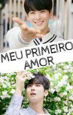 Meu Primeiro Amor - Cha EunWoo by TrouxaIludida17