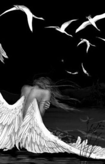 Se mi Ángel : Cazdores de Sombras