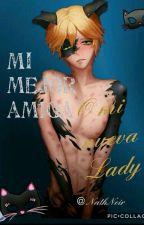 "Mi mejor amiga o Mi nueva ""Lady"" ?(Adrien/Chat noir x tu) ❤  [EDITANDO] by NathNoir27"