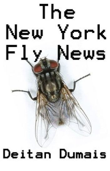 The New York Fly News