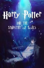 Harry Potter and the Sympathy of Souls by Ray_MOON_