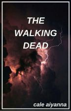 the walking dead by smnius