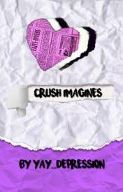 Crush Imagines Pregnant Wattpad