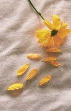 《TRANSFIC | MEANIE》 Tình yêu của cậu có như hoa nở qua mùa rồi lại tàn không? by 1802_v