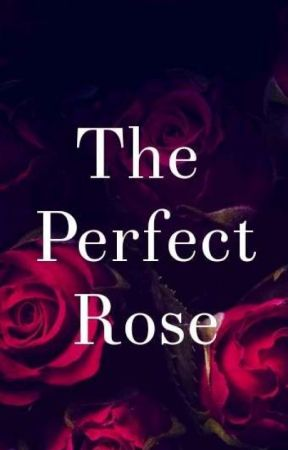 The Perfect Rose by FatinWrites