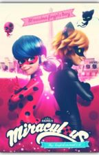 Miraculous fangirl's diary (CZ) by LaylaCarsten0250