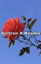 |Voltron x Reader Oneshots| by LizzyNova