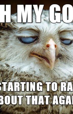 Random Insanity Ridiculous Owl Memes Wattpad