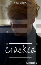 CRACKED II - BTSxBlackPink by rxselips