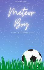 Meteor Boy | Inazuma Eleven x Reader by Shavershi