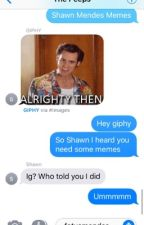 Shawn Mendes memes by TOTTALYARREAGA