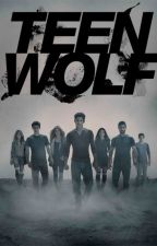 Teen Wolf X Reader Oneshots  by ryleigh-jae