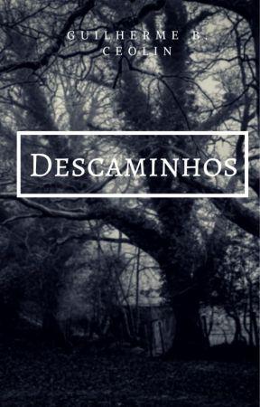 Descaminhos by GuilhermeBordignon