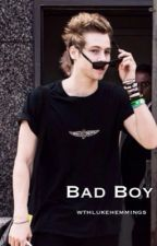 Bad Boy (A Luke Hemmings Fanfiction) by wthlukehemmings