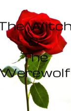 The Witch & The Werewolf by icanlivewiththat