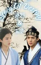 Story Of Destiny 왕자 & 王子 by doubleS_Ysquare