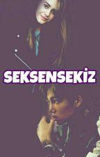 SEKSENSEKİZ by parksenayeol