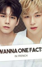 wanna one - facts in french by Vibrasenmi
