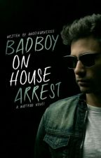 Bad Boy on House Arrest by angelharness22