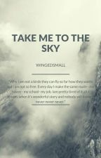 Take Me to The Sky by Wingedsmall_