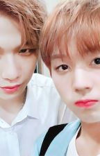 [NIELWINK] THỎ NHỎ CỦA KANG DANIEL by Wee1808