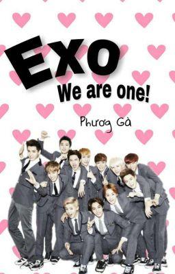 Đọc truyện (Đoản văn) Exo, we are one!!!