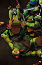 TMNT x Reader (Requests Open) by Jasrielle_