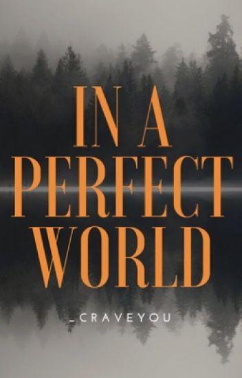 In A Perfect World (boyxboy)