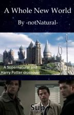 A Whole New World by -notNatural-