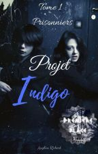 Projet Indigo [TOME 1 : Prisonniers] by DeathWings97